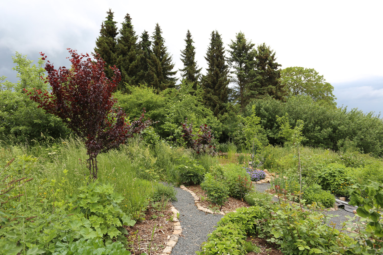 wilde gärten kleine häuser